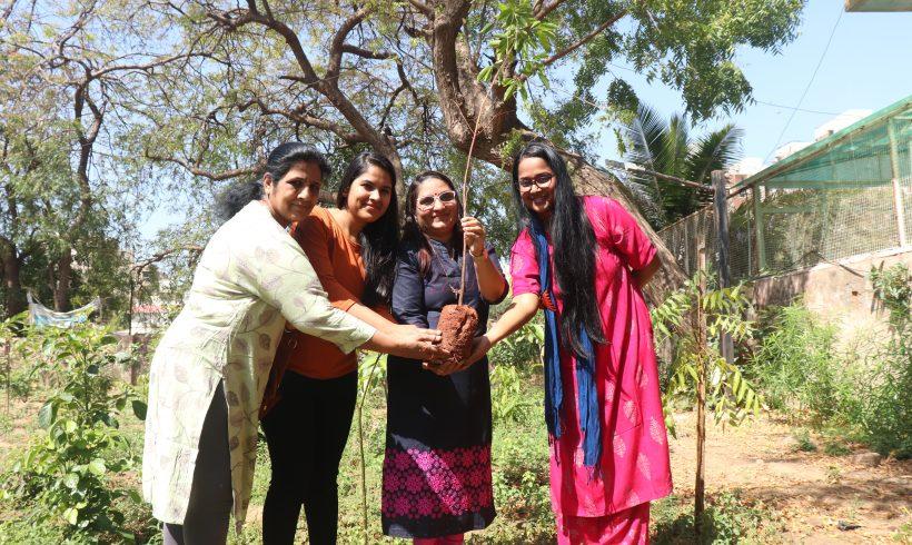 Tree Plantation on Women's Day