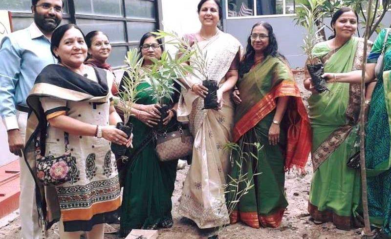 Tree Plantation(AMA)