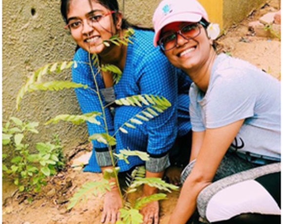 Tree Plantation(Neelkanth)