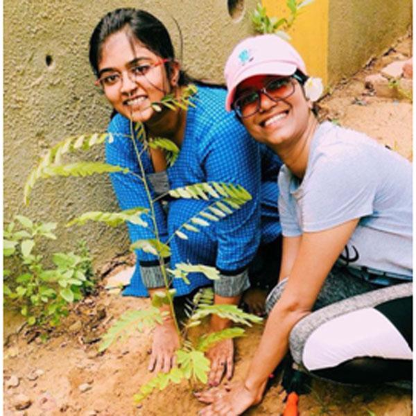 Tree Plantation(Neelkanth)