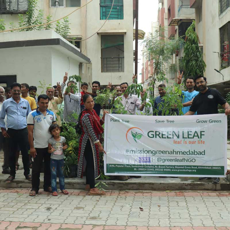 Tree Plantation(Rameshwar)