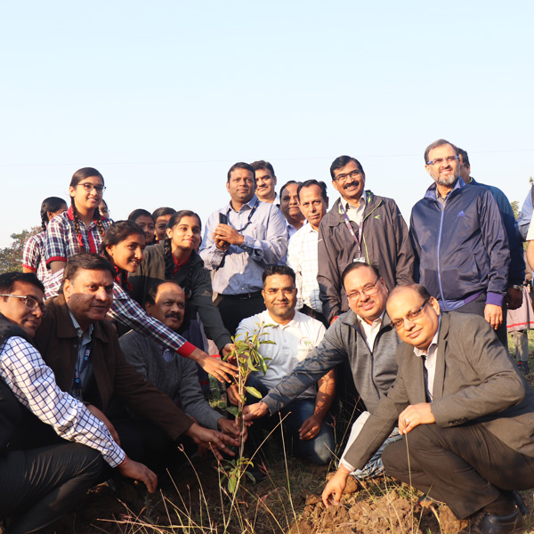Tree Plantation(SBI Team)